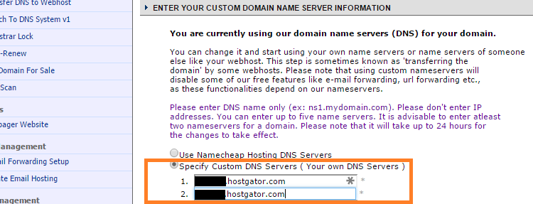 Enter custom domain name server information